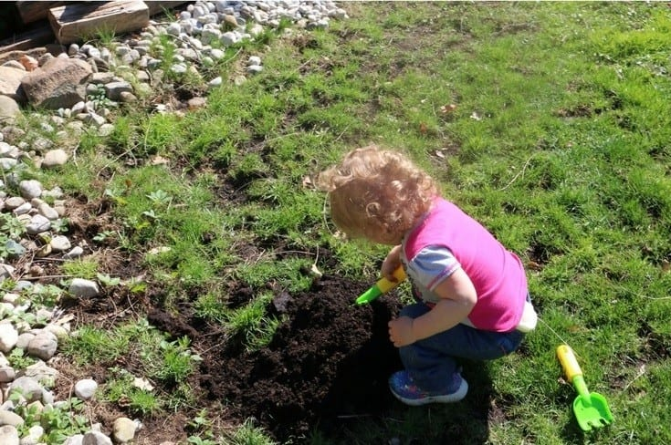 Toddler in a pink shirt using gardening tools outside in the sun