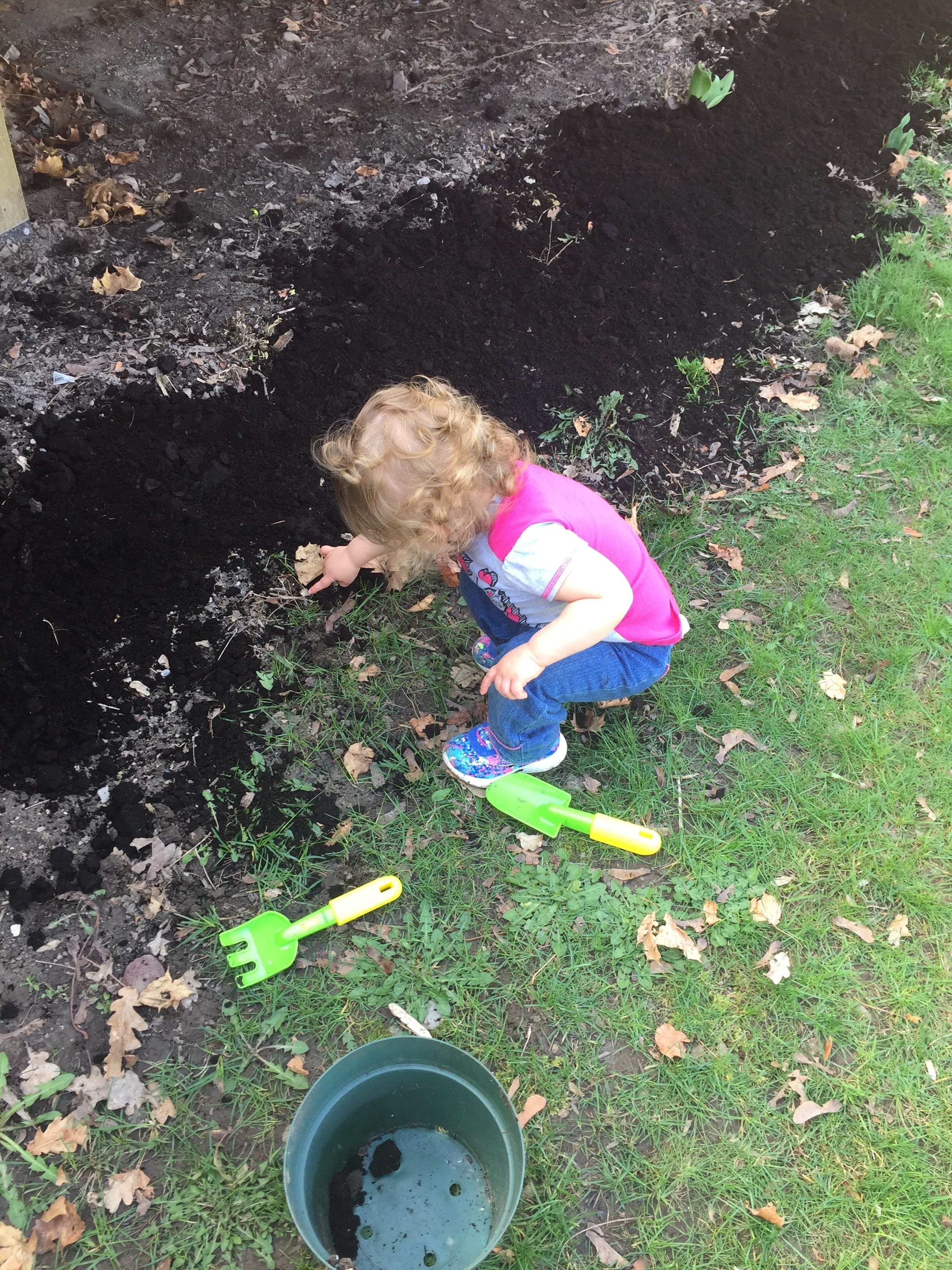 Toddler in jeans and a pink shirt playing in fresh dirt