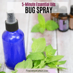 Homemade Bug Spray That Works - Made In 5 Minutes