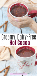 Pinterest image with text: two images of dairy-free hot chocolate in a white and red mug with cinnamon sticks beside it the top image of hands holding the mug